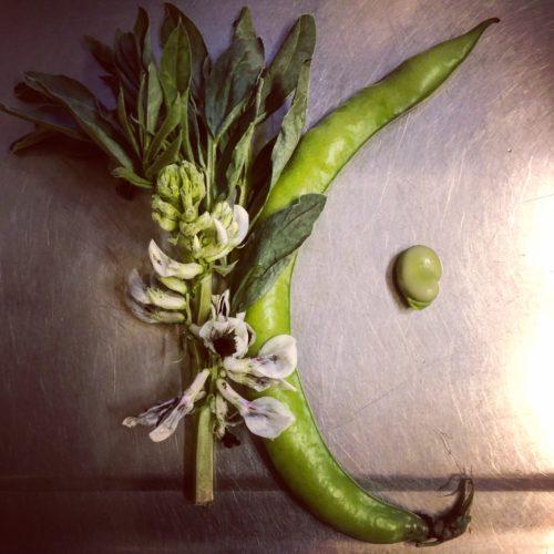 Frutta e verdura fresca di stagione